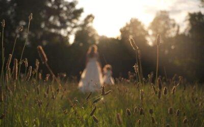 Svatební video z Pornice
